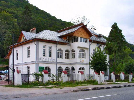Vila Crinilor