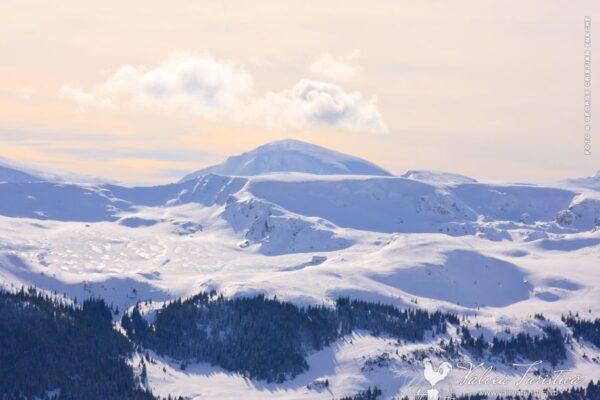 Parang - Varful Mohoru. Vedere de la Ski Resort Transalpina