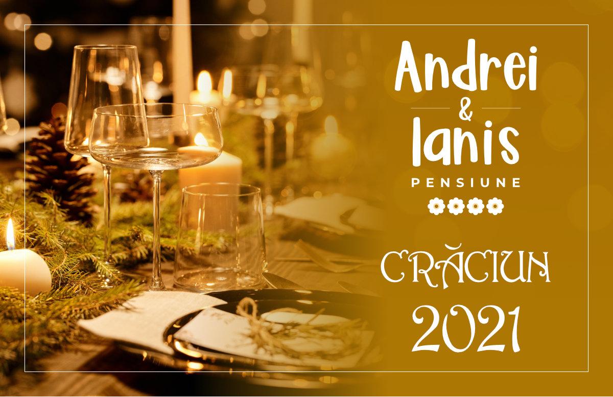 Oferta Pensiunea Andrei & Ianis